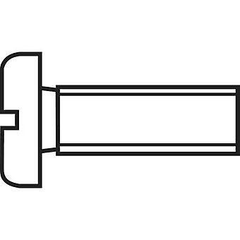 TOOLCRAFT 815918 Allen screws M6 20 mm Slot DIN 84 ISO 1207 Plastic, Polyamide 10 pc(s)