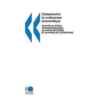 Comprendre La acumulação Economique analisar Au Niveau Macroeconomique Au Niveau Sectoriel Et Au Niveau de LEntreprise pela Oecd Publishing