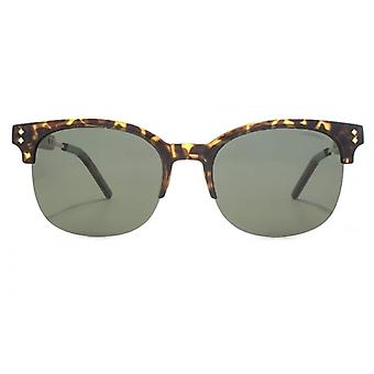 Polaroid Contemporary Clubmaster Style Sunglasses In Havana Gold Polarised