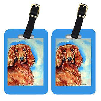 Carolines Treasures  7029BT Pair of 2 Irish Setter Luggage Tags