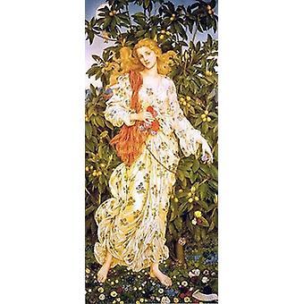 Impressão de Poster flora por Evelyn De Morgan (14 x 28)