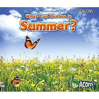 What Can You See in Summer? (Seasons (Heinemann))