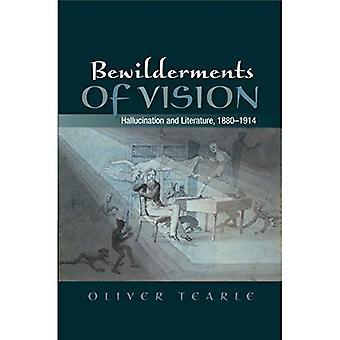 Bewilderments Vision