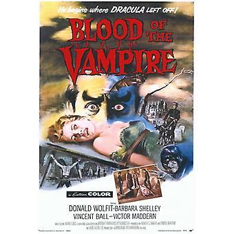 Bloed van de vampier film Poster Print (27 x 40)