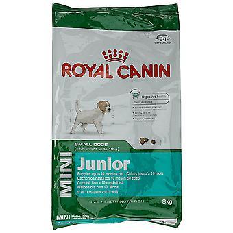 Royal Canin Mini Junior sucha karma dla psów