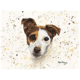 Bree Merryn Canvas Cutie, Jake