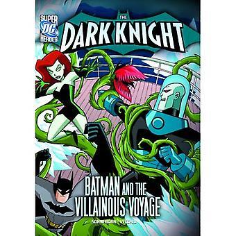 Batman il cavaliere oscuro: e il malvagio viaggio