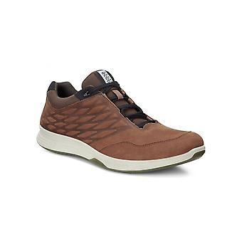 Ecco Sneaker Exceed Low 87000402195 universal all year men shoes