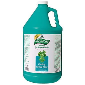 Ppp Aromacare Herbal Mint Shampoo 3.8L