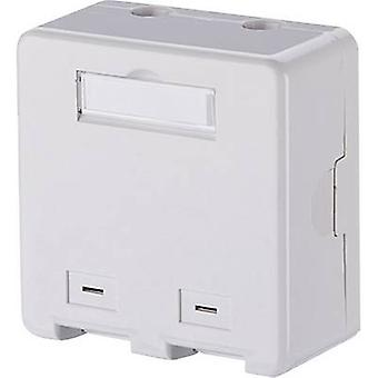 Metz Connect Network outlet Surface-mount Unequipped 2 ports Pure white