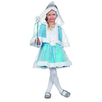 Snow Princess dress costume children ice blue Princess Carnival fairy girl