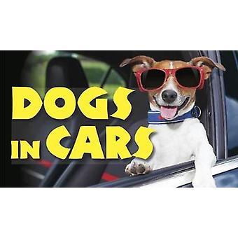 Chiens dans les voitures par Jack Russell - livre 9781782745464