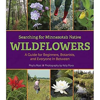 Auf der Suche nach einheimischen Wildblumen Minnesotas