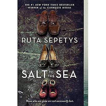 Salz zum Meer