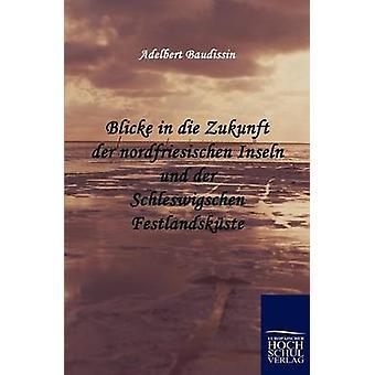 Blicke in die Zukunft der nordfriesischen Inseln und der Schleswigschen Festlandskste by Baudissin & Adelbert