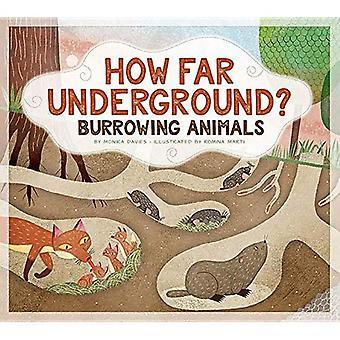 How Far Underground?: Burrowing Animals