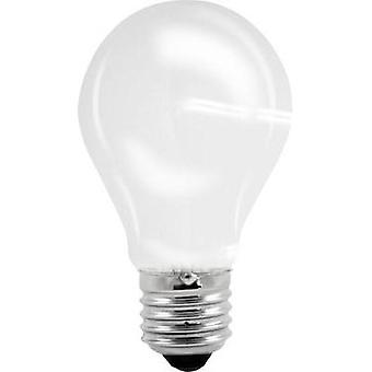 LED E27 Arbitrary 6 W = 51 W Warm white (Ø x L) 60 mm x 106 mm EEC: A++ Müller Licht Filament 1 pc(s)