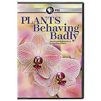 Plants Behaving Badly [DVD] USA import