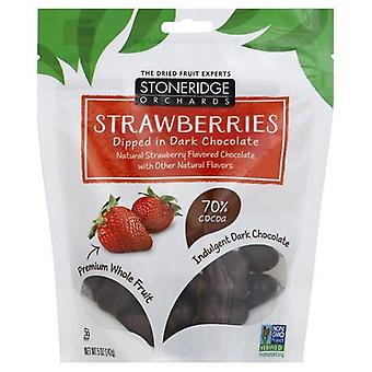 Stoneridge Orchards Strawberries Dipped in Dark Chocolate 2 Bag Pack