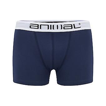 Tierische Asta-Unterwäsche