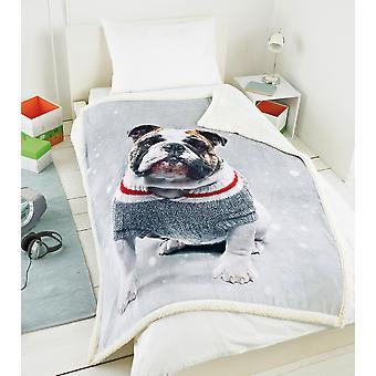 Country Club Festive Dog Blanket