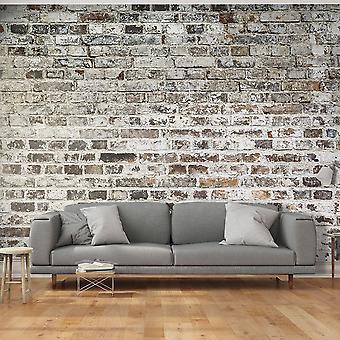 Wallpaper - Old Walls