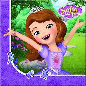Sofia the first Mystic Isles Princess party napkins 33 x 33 cm 20pcs children birthday theme party