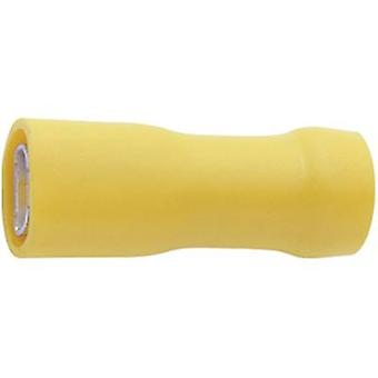 Klauke 750V Blade receptacle Connector width: 6.3 mm Connector thickness: 0.8 mm 180 ° Insulated Yellow 1 pc(s)