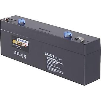 Conrad energy CE12V/2,3Ah 250177 VRLA 12 V 2.3 Ah AGM (W x H x D) 177 x 60 x 34 mm 4.8 mm blade terminal Maintenance-fre