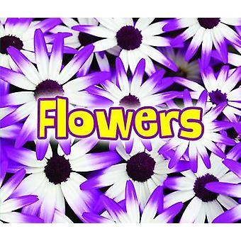 All About Flowers by Claire Throp - 9781406284379 Book