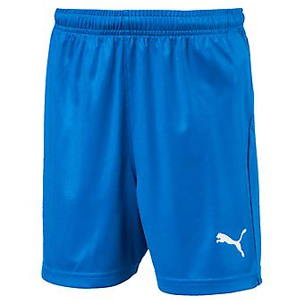 PUMA LIGA s Core w Brief Jr Kinder Fußball-Shorts Electric Blau Lemonade-Weiss