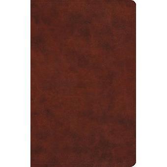 ESV Large Print Value Thinline Bible - 9781433550263 Book