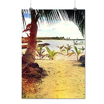 Matte or Glossy Poster with Beach Sunny Summer Nature Sandy Shore | Wellcoda | *q1050