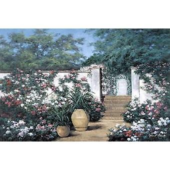 Jardin de Fleur Poster Print by  Diane Romanello