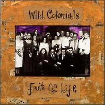 Wild Colonials - Fruit of Life [CD] USA import