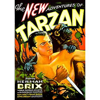 New Adventures Tarzan [DVD] USA import