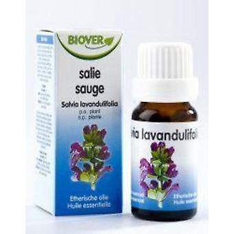 Biover Salvia Officinalis Aceite Esencial Bio 10 ml