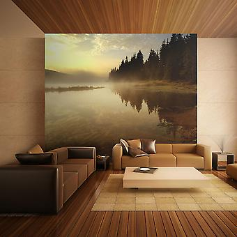 Wallpaper - Forest and lake