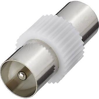 アンテナ アダプター [ベリング-李/IEC プラグ 75Ω-ベリング-李/IEC プラグ 75Ω] SilverRenkforce