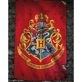 Harry Potter Hogwarts Flag Poster Poster Print