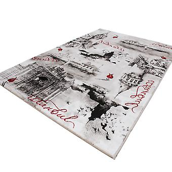 Rugs -Istanbul - Silver & Red