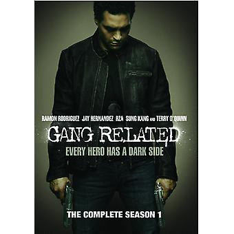 Gang Related: The Complete Season 1 [DVD] USA import