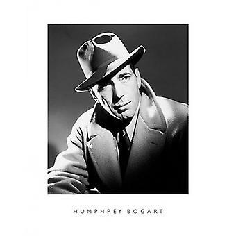 Humphrey Bogart Poster Print (16 x 20)