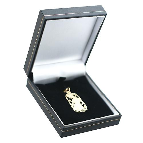 9ct Gold 33x17mm Aquarius Zodiac Pendant
