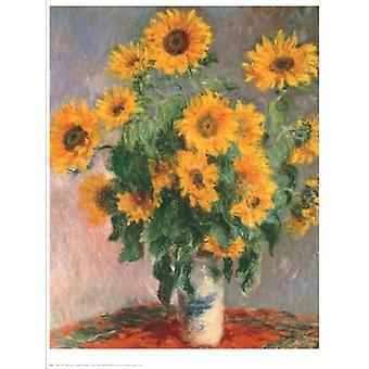 Impressão de cartaz girassóis por Claude Monet (24 x 30)