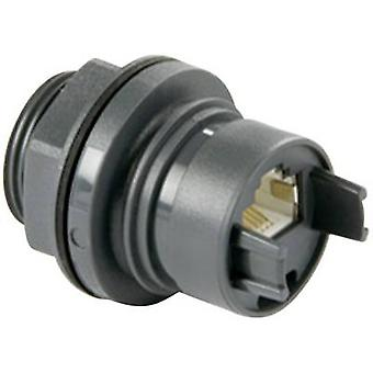 Bulgin PXP6033/TP Sensor/Aktor Datenkabel Sockel, eingebaute Nr. Stifte (RJ): 8P8C 1 Stk.