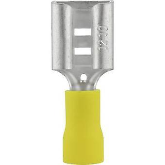 Ricettacolo di Vogt Verbindungstechnik 3914 lama larghezza connettore: 9,5 mm connettore spessore: 1.2 mm 180 ° parzialmente isolato giallo 1/PC