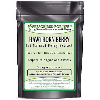 Hawthorn-4:1 Natural Berry Extract Powder (Crataegus pinnatifida)