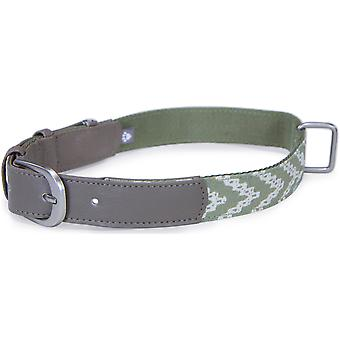Loved Ones Fashion Dog Collar W/Tag Silencer - Medium-Green 85008