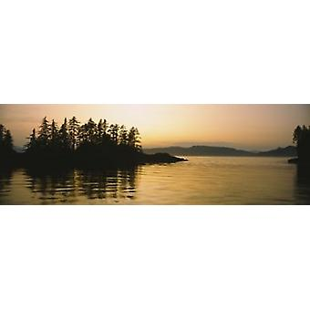 Silhouette of trees in an island Frederick Sound Alaska USA Poster Print